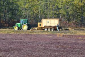 harvest-cleanup-087